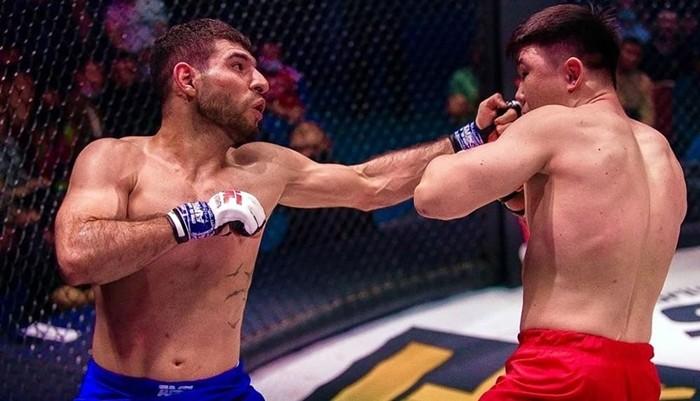 Персидский Дагестанец фото с боя
